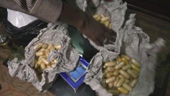 web 1_Antidrogen-Polizeieinheit in Dakar; konfisziertes Kokain