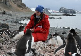 THE UNKNOWN LIFE OF ANTARCTICA – A YEAR AMID THE ETERNAL ICE